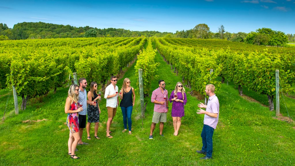 Avondale Sky Winery, Nova Scotia