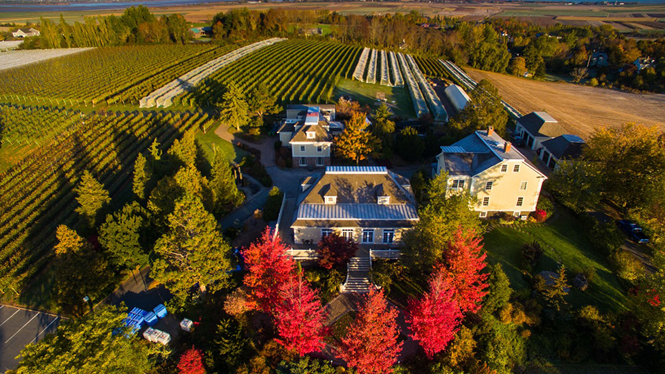 Domaine Grand Pré Winery Overhead View