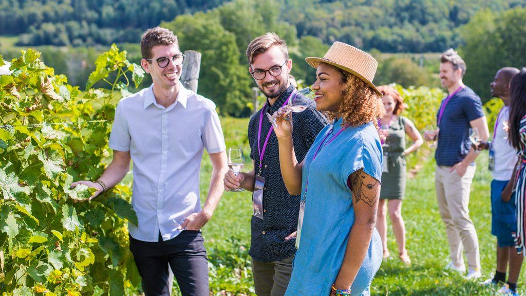 Grape Escapes Nova Scotia Wine Tours
