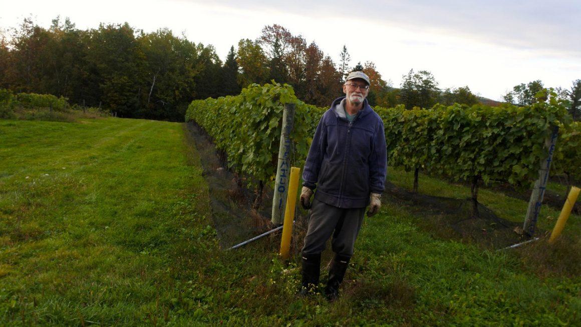 Lunenburg County Winemaker