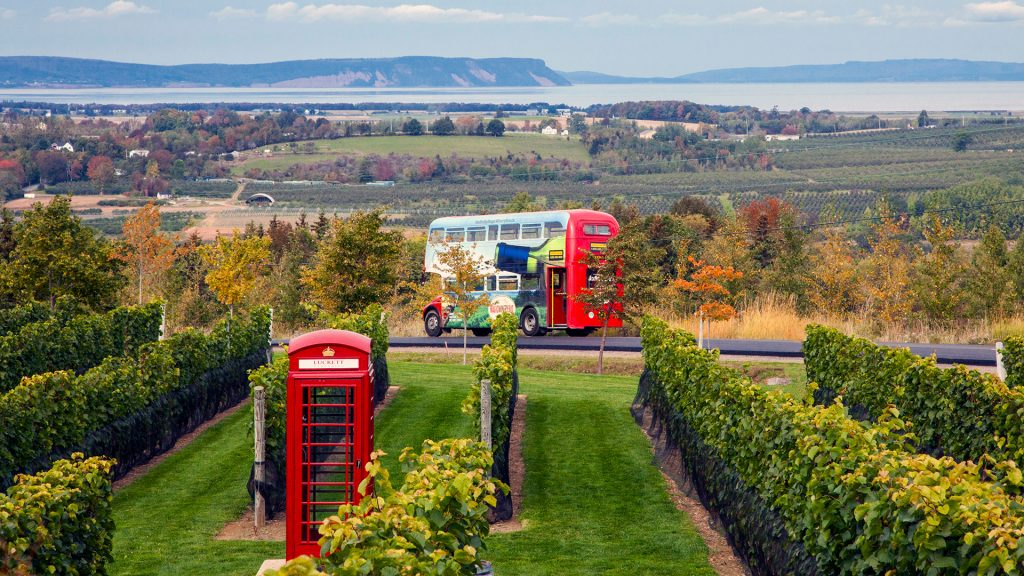 Magic Winery Bus Tour