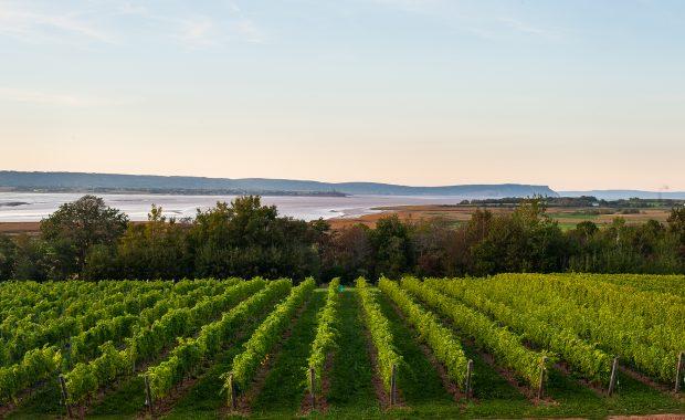 Nova Scotia Bay of Fundy