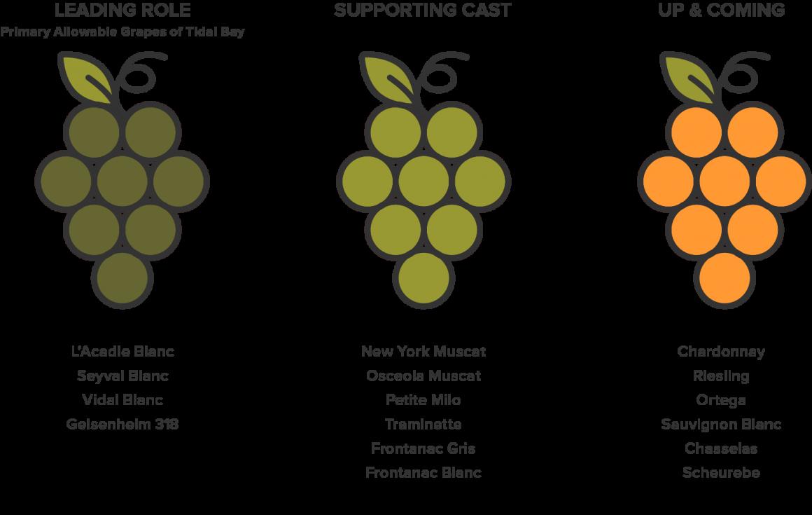 White Wine Grapes of Nova Scotia
