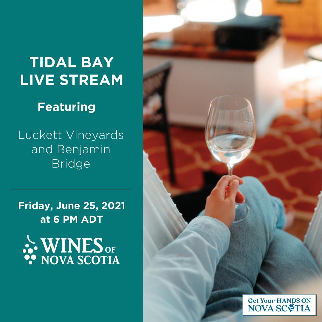 Tidal Bay Live Stream